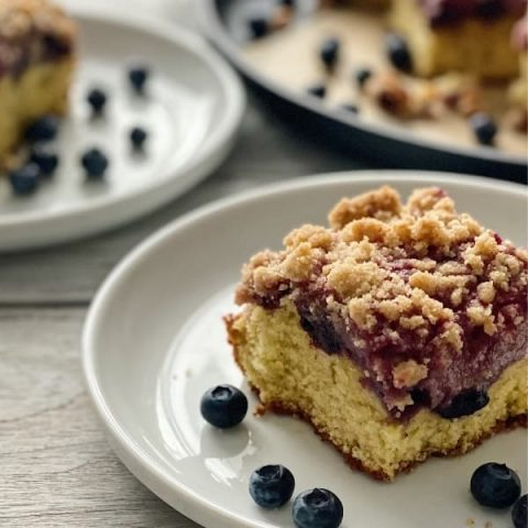 Blueberry Crumb Cake Made with Sourdough Discard